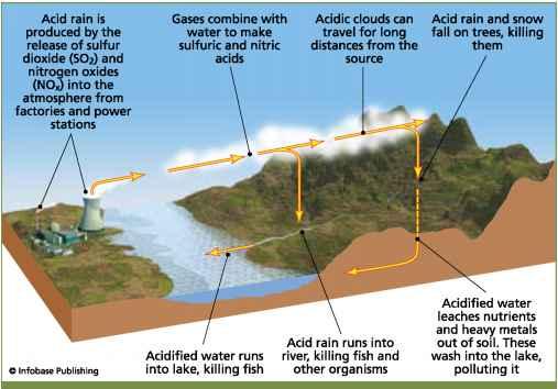 What Is Acid Rain - Air Pollution