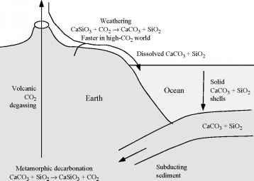 Silicate Weathering Climate Change