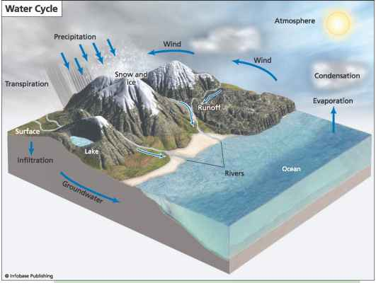 The Hydrologic Cycle - Climate Systems