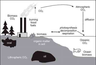 Carbon Cycle Anthropocentric