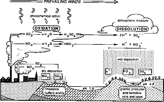 formation acid rain: source: compiled from information in park (1987)