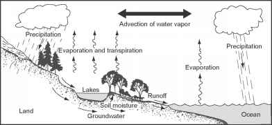 Global Hydrologic Cycle