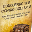 Conquering The Coming Collapse Review