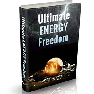 Learn How To Survive Energy Crisis