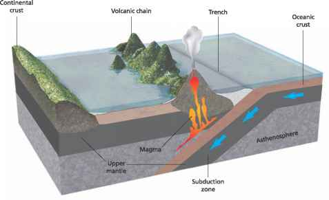 Tectonic Force That Drives The Plate