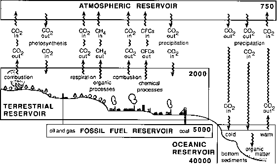 Greenhouse Effects Schematic