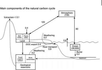 Geochemical Carbon Cycle