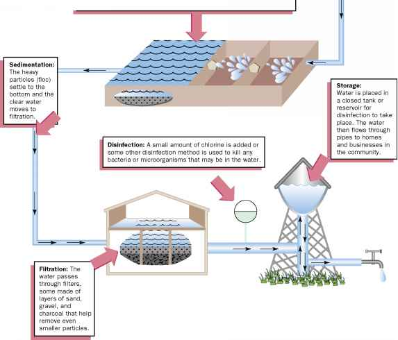Natural Treatment Plant System