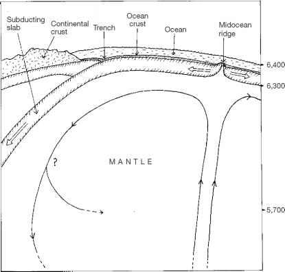 Convection Currents The Mantle