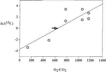 Carbon Oxygen Cycle