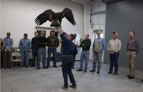 Bald Eagle Protection Act