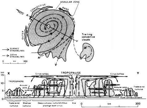 Arcoaire Heat Pump Wiring Diagram in addition Bryant Wiring Diagram furthermore Carrier Heat Pump Thermostat Wiring Diagram furthermore York Air Conditioner Wiring Diagram also Carrier Heating And Air Conditioning. on heat pump wiring diagram air handler